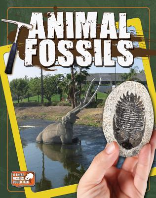 Animal Fossils By Hyde, Natalie